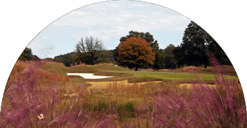 Mirimichi Golf Course in Memphis, Tennessee